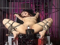 Asian hottie hogtied and fucked by toys