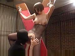 japanese big tits976-1