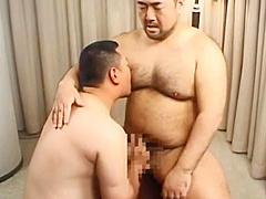 Hairy bear Japanese02