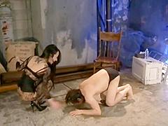 Mistress Dominat their Slave wiht pee